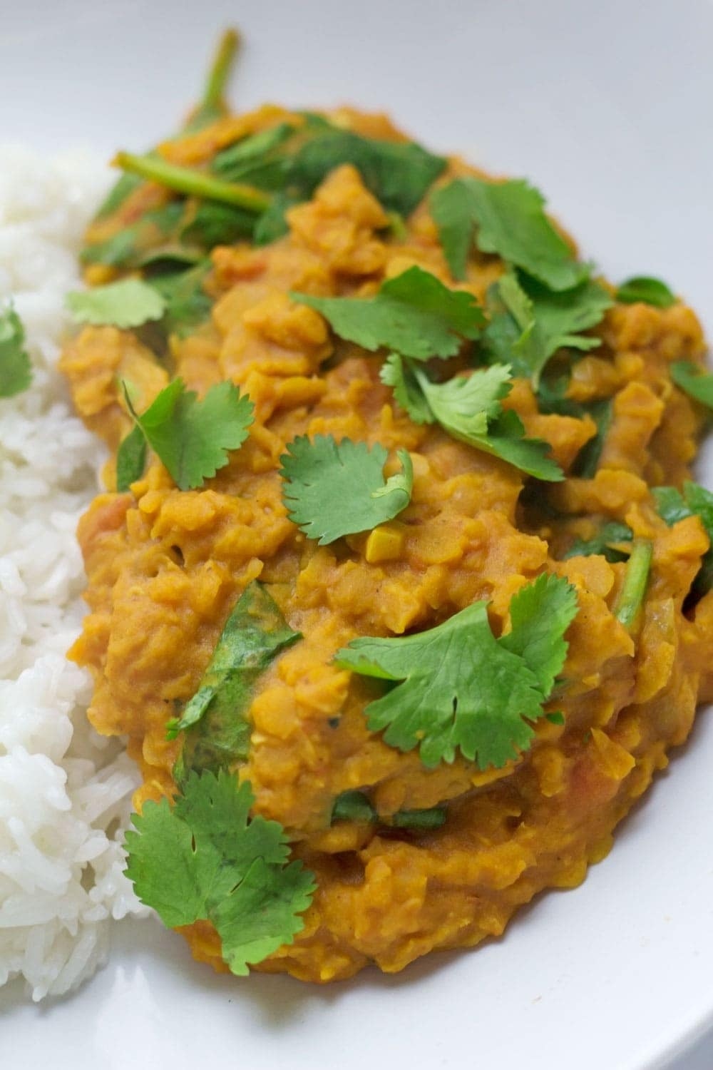 Healthy Red Lentil Dal with Spinach • The Cook Report
