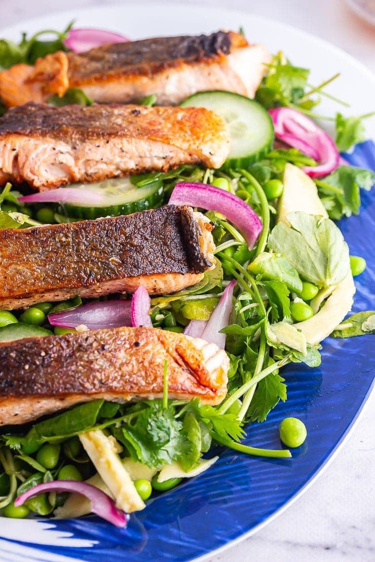 Close up of salmon fillets on a green salad with pickled onions