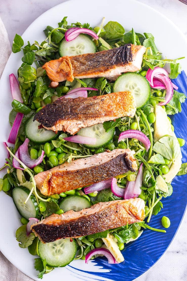 Overhead shot of four salmon fillets on a platter of salad with cucumber and pickled onions