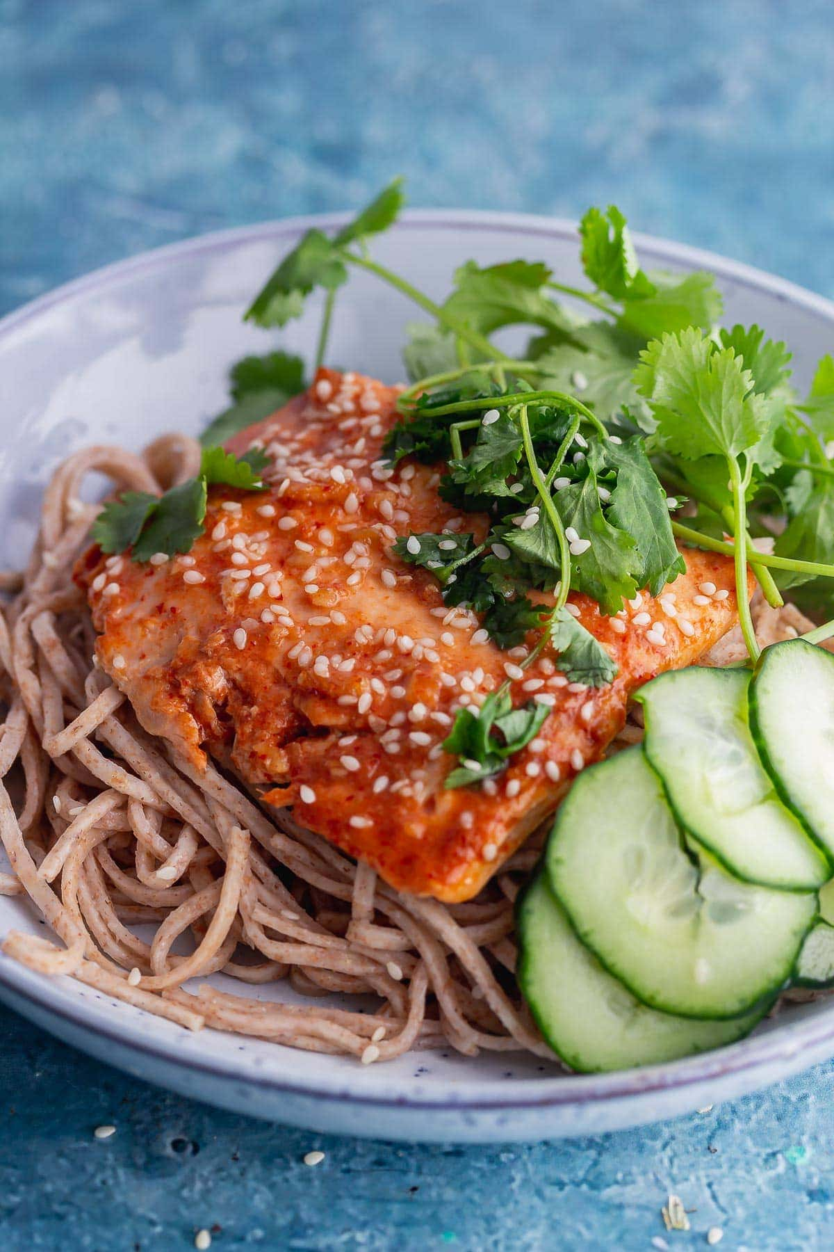Close up of honey soy salmon with cucumber and noodles