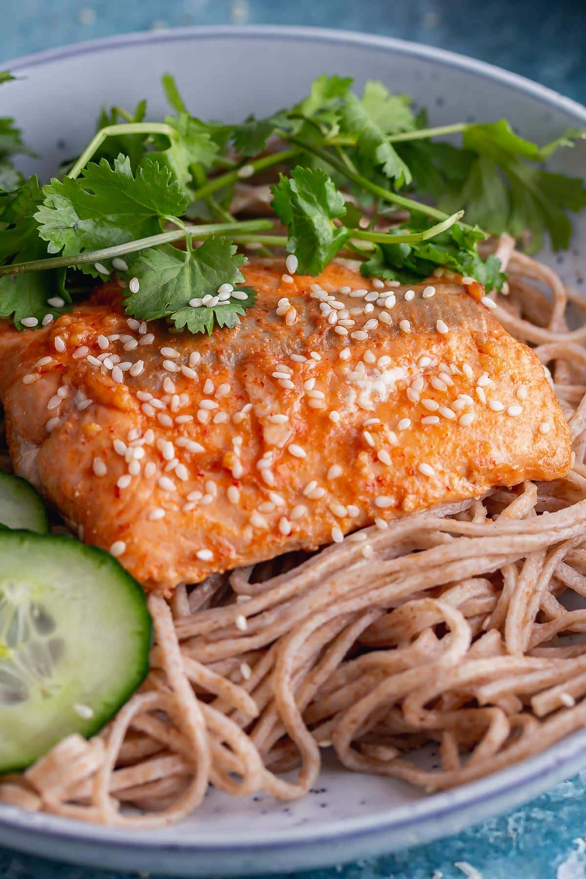 Close up of glazed salmon on noodles