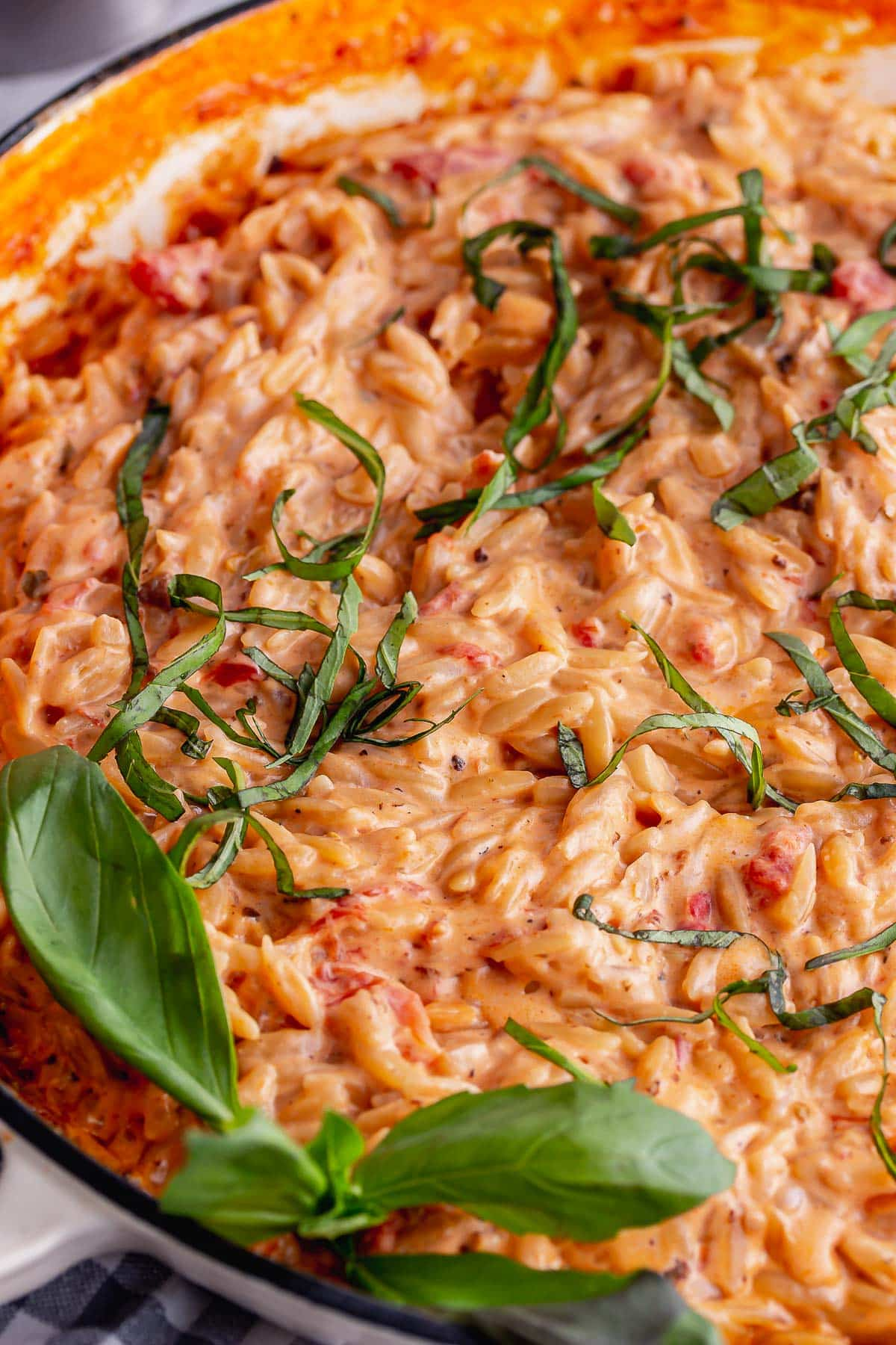 Close up of one pot orzo with basil