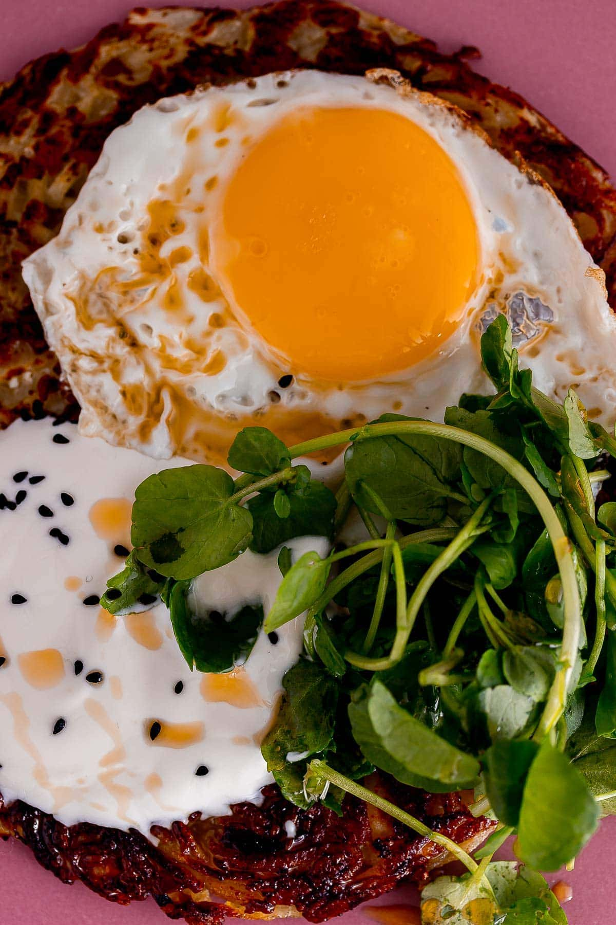 Close up of fried egg and greens