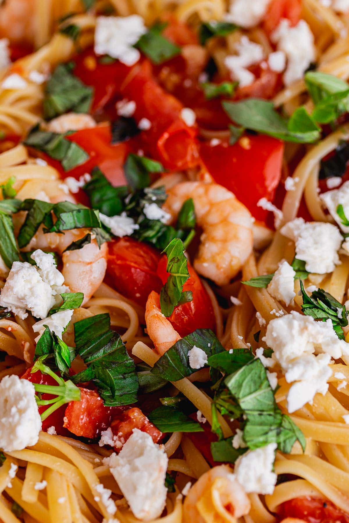 Super close up of prawns, pasta, tomatoes and basil