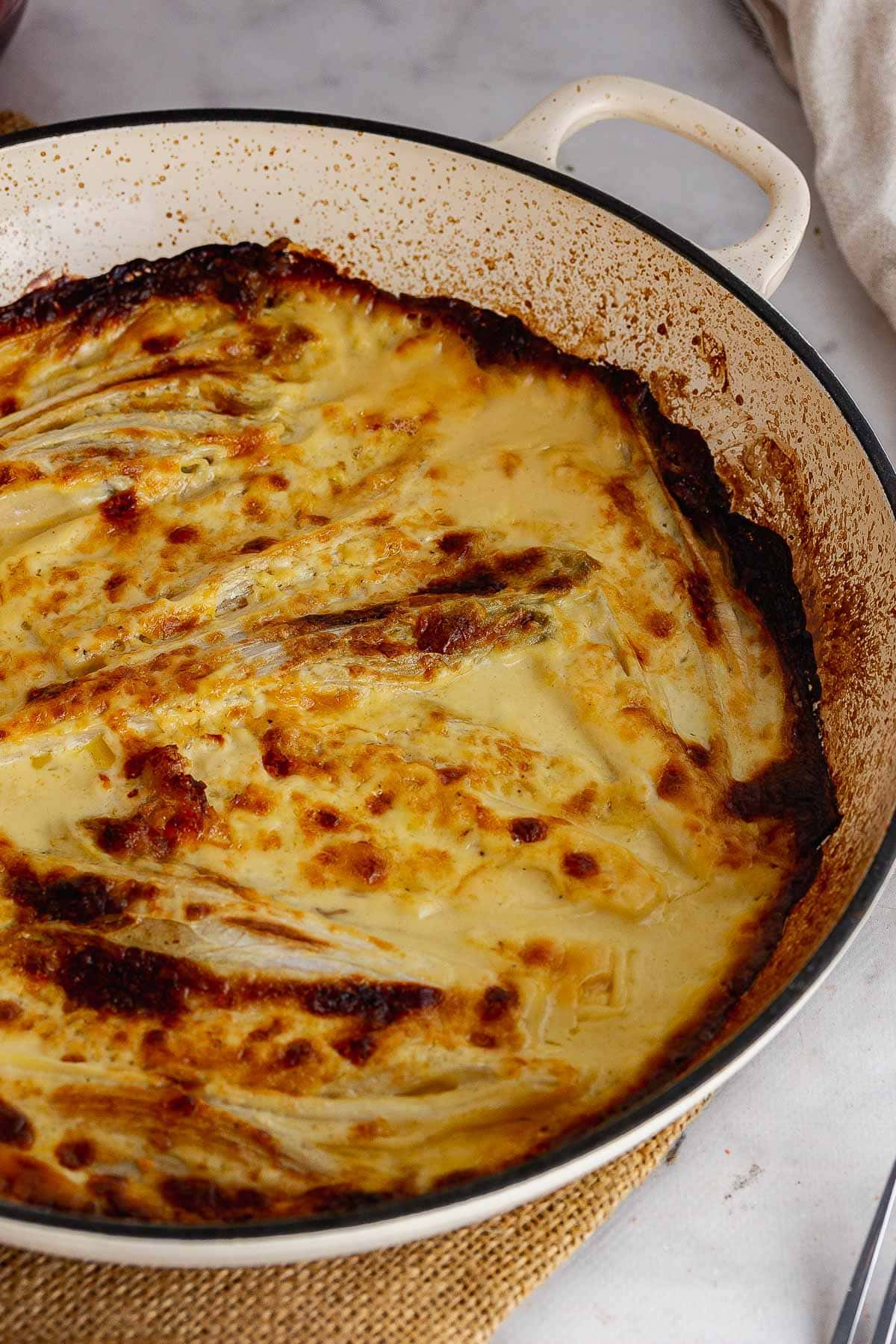Chicory gratin in a baking dish