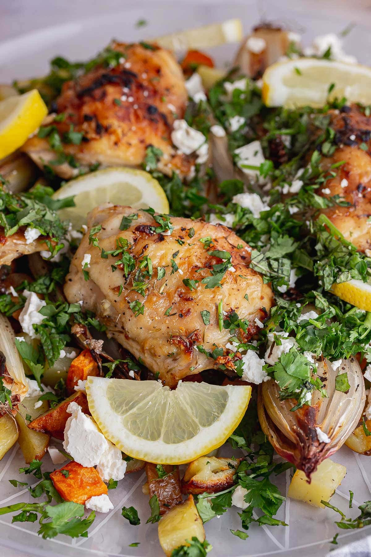 Chicken topped with lemon slices and herbs