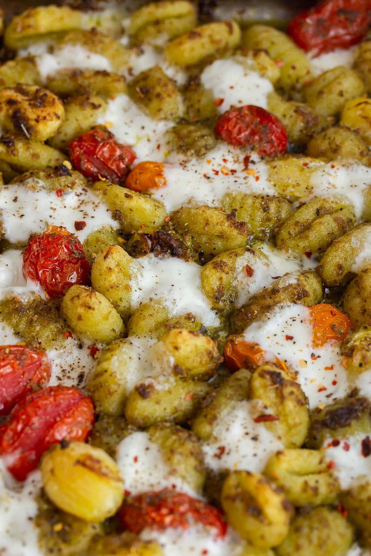 Close up of gnocchi with tomato and mozzarella